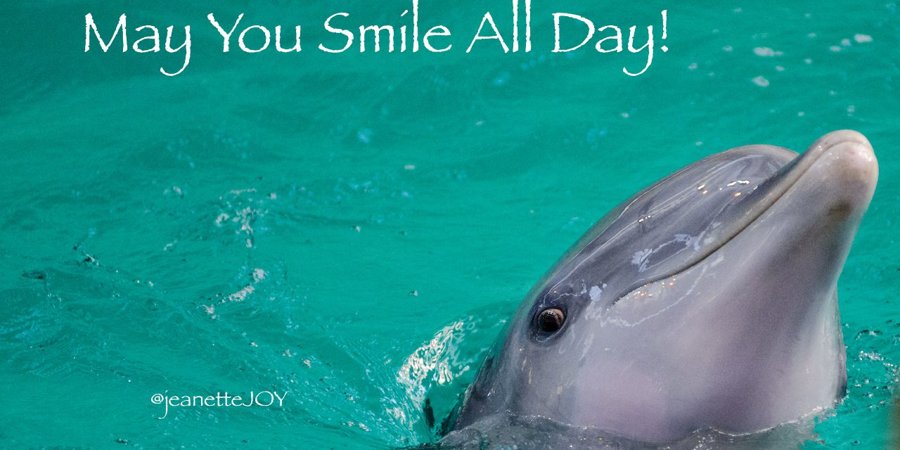 May You Smile All Day!